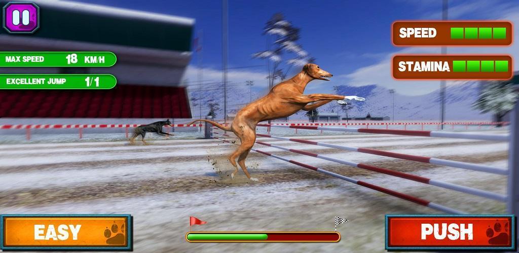 CRAZY DOG RACING 3D