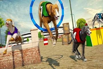 CRAZY DOG RACING 3D