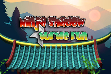 Ninja Shadow Turtle Run Kid-Unity