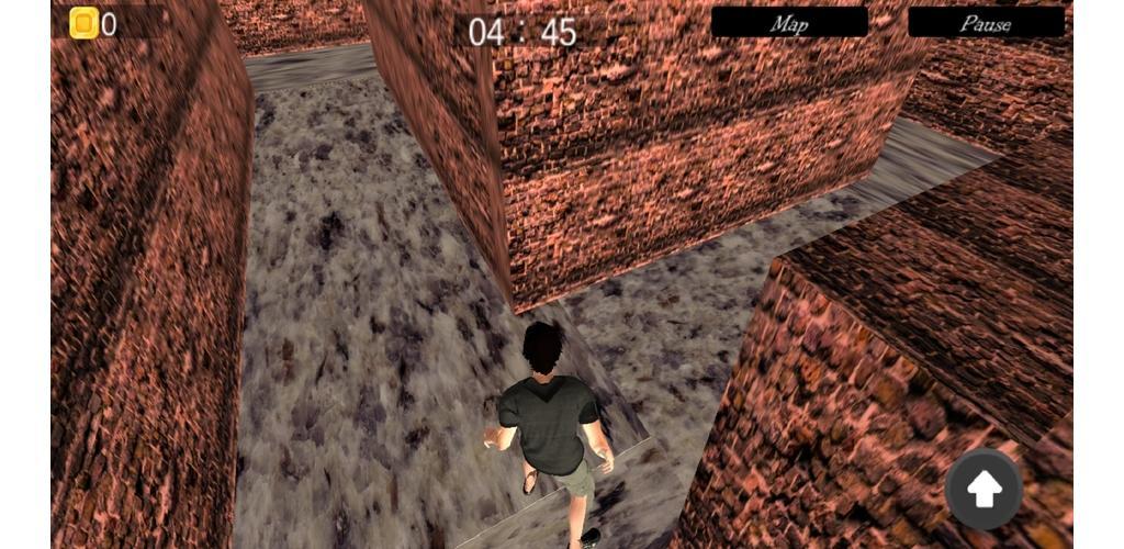 Labyrinth Maze Runner