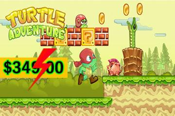 Turtle Ninja Adventure